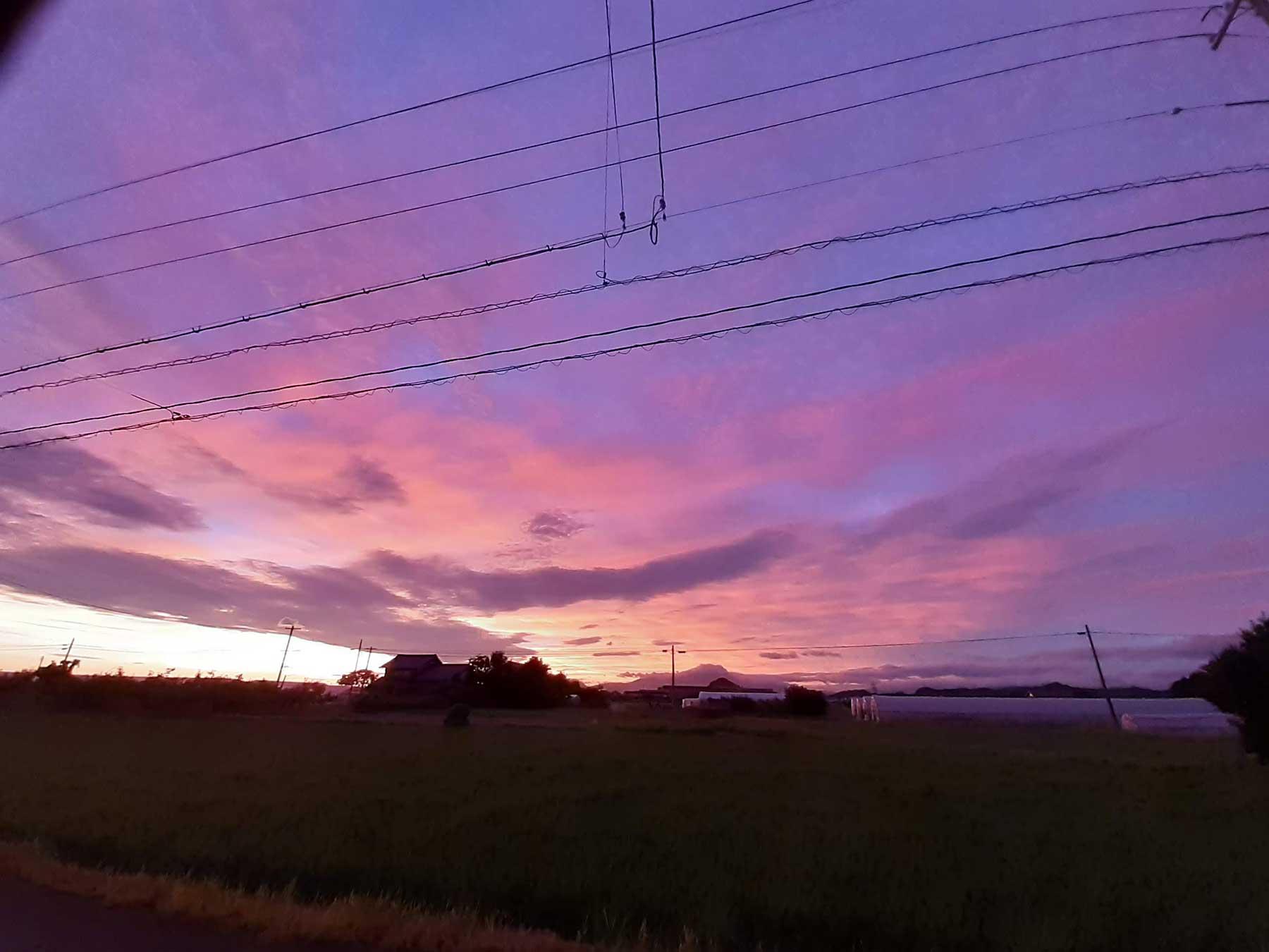 紫色に染まった朝
