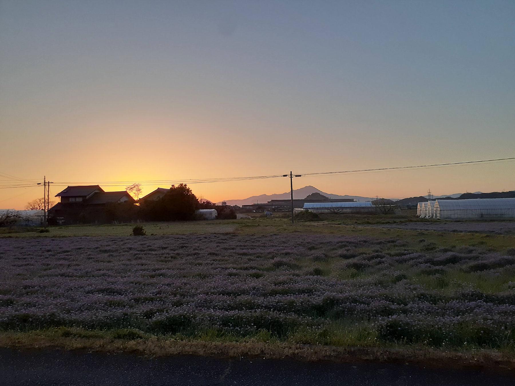 朝の風景 大山