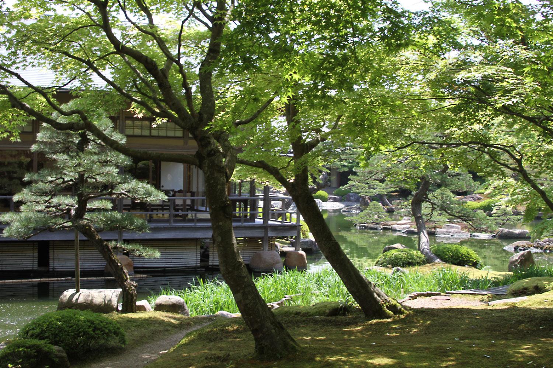 園庭と茶席