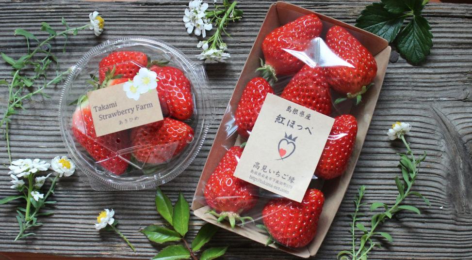 かわいい「いちご」販売中 松江駅おみやげ楽市
