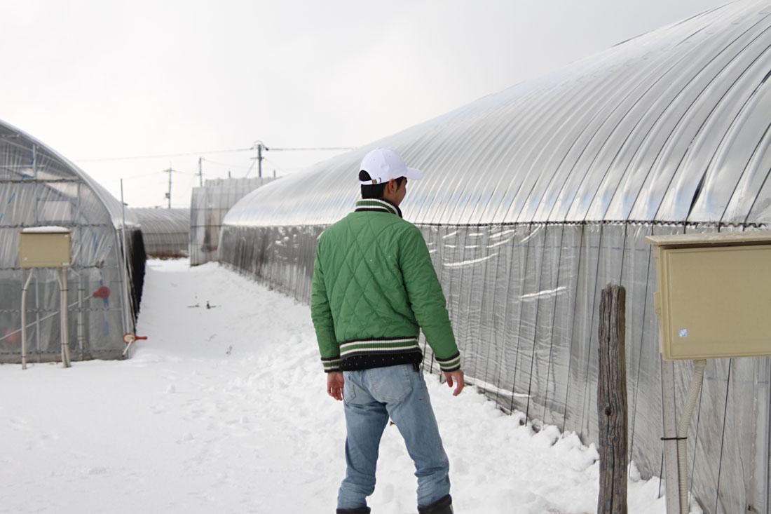 雪の中の作業