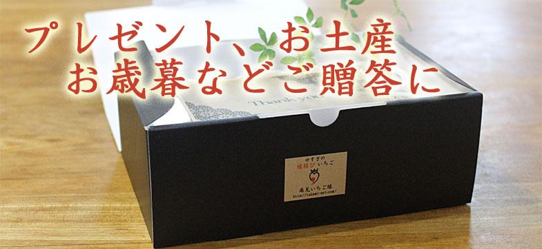 プレゼント、お土産、お歳暮など贈答用アイス
