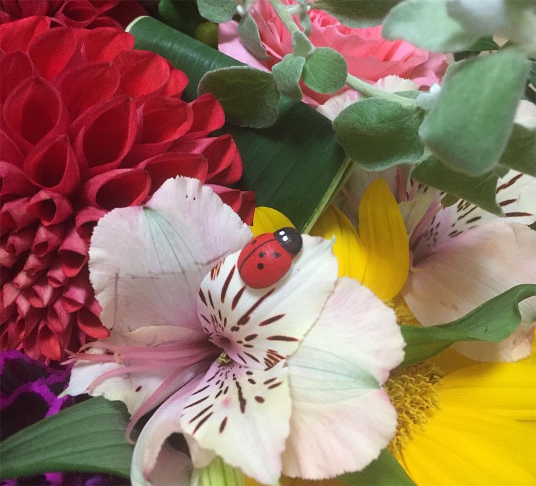 花束の中にてんとう虫