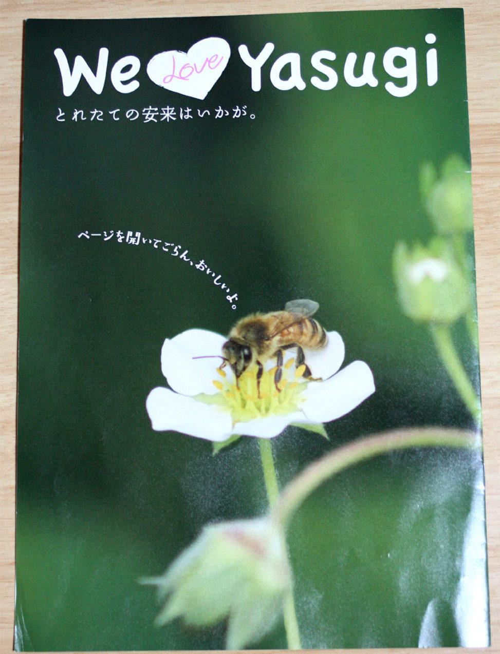 We love Yasugi 安来紹介