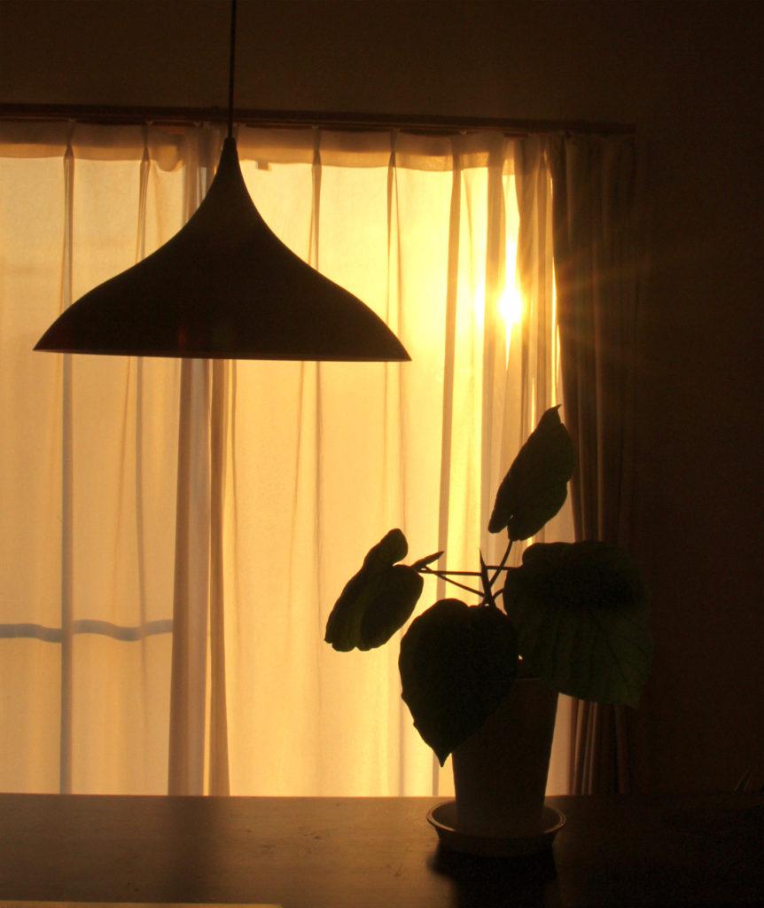 部屋の中に差し込む朝日