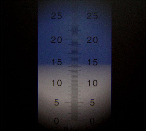 糖度の測定